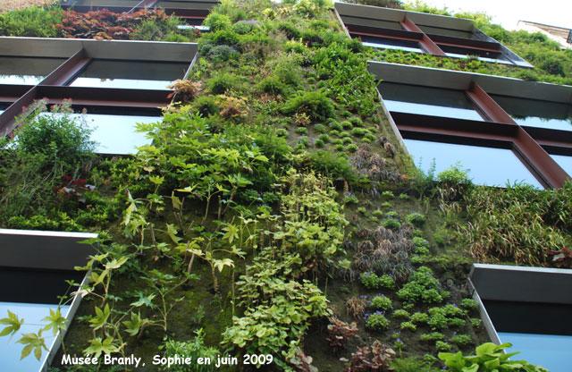 mur vegetal exterieur beautiful construire un mur vgtal intrieur ou extrieur with mur vegetal. Black Bedroom Furniture Sets. Home Design Ideas