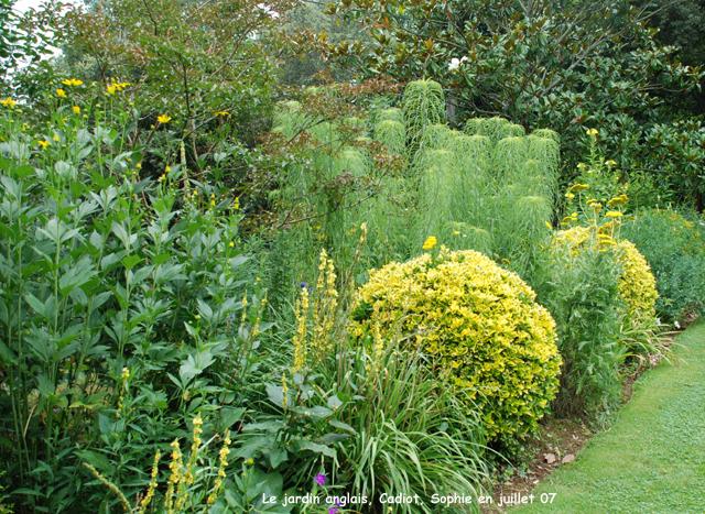 Les jardins anglais cadiot for Haie jardin anglais