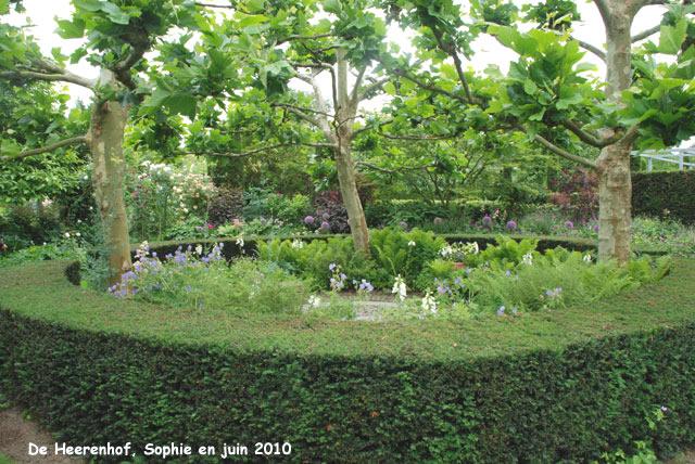 Pinterest le catalogue d 39 id es for Le jardin japonais sophie walker