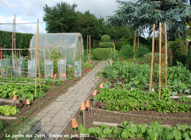 Le potager for Creation jardin potager
