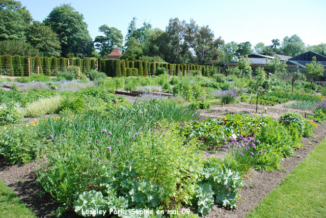 Loseley park le potager biologique for Le jardin potager bio