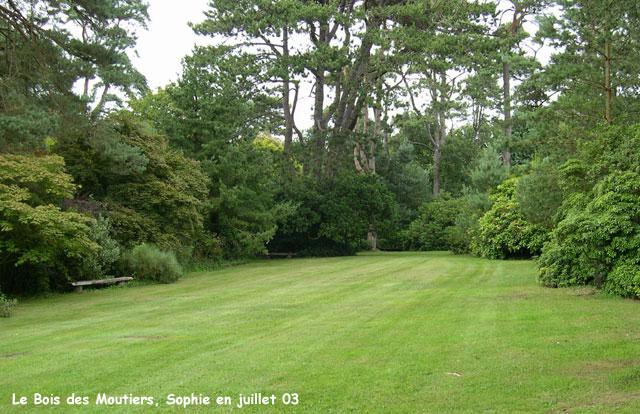 Le Bois des Moutiers la valleuse ~ Les Bois De Sophie