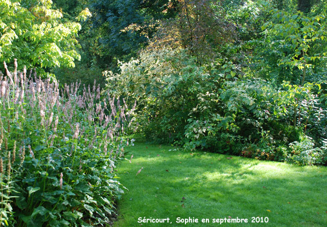 Le jardin de vivaces s ricourt for Plantes fleuries jardin