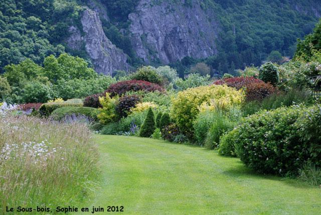 Arbustes pourpres et dor s for Les bois flottes de sophie