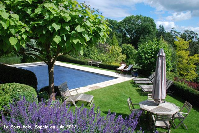La piscine au sous bois for Piscine sous jardin
