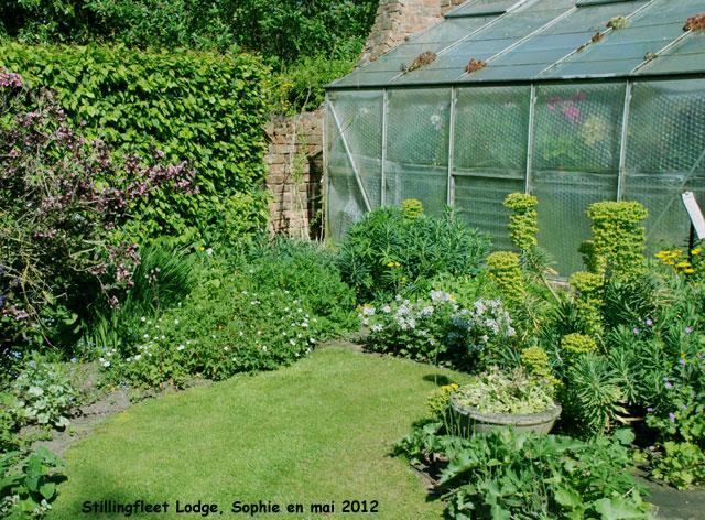 Le jardin au poirier - Serre de jardin adossee au mur ...