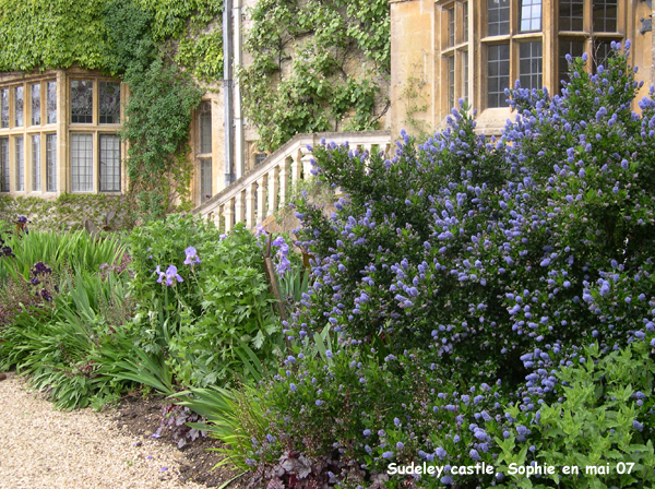Le petit jardin wittenberge colombes maison design - Petit jardin restaurant luxembourg le mans ...