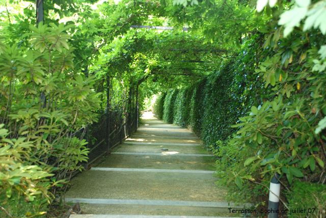 Terrasson le tunnel de verdure - Jardins de l imaginaire terrasson ...