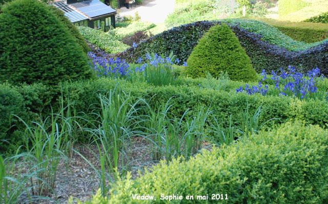 Veddw le jardin de gramin es - Jardin de graminees photos ...